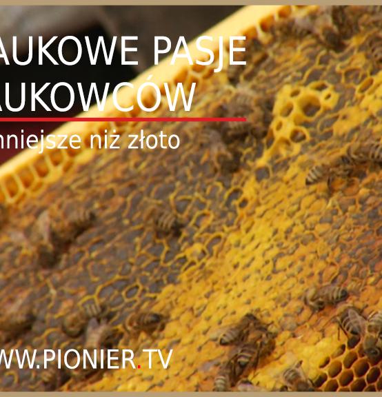 Krzysztofa Antoszewskiego z WMiBM w PIONIER.TV